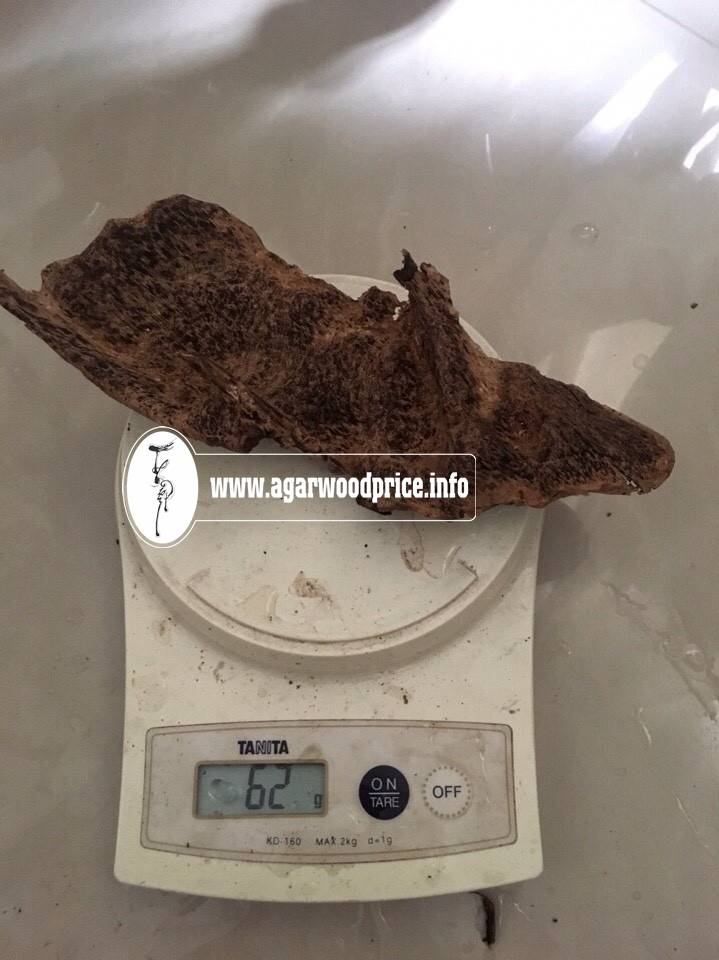 New arrival - Underwater Natural Oud wood / Agarwood from Vietnam