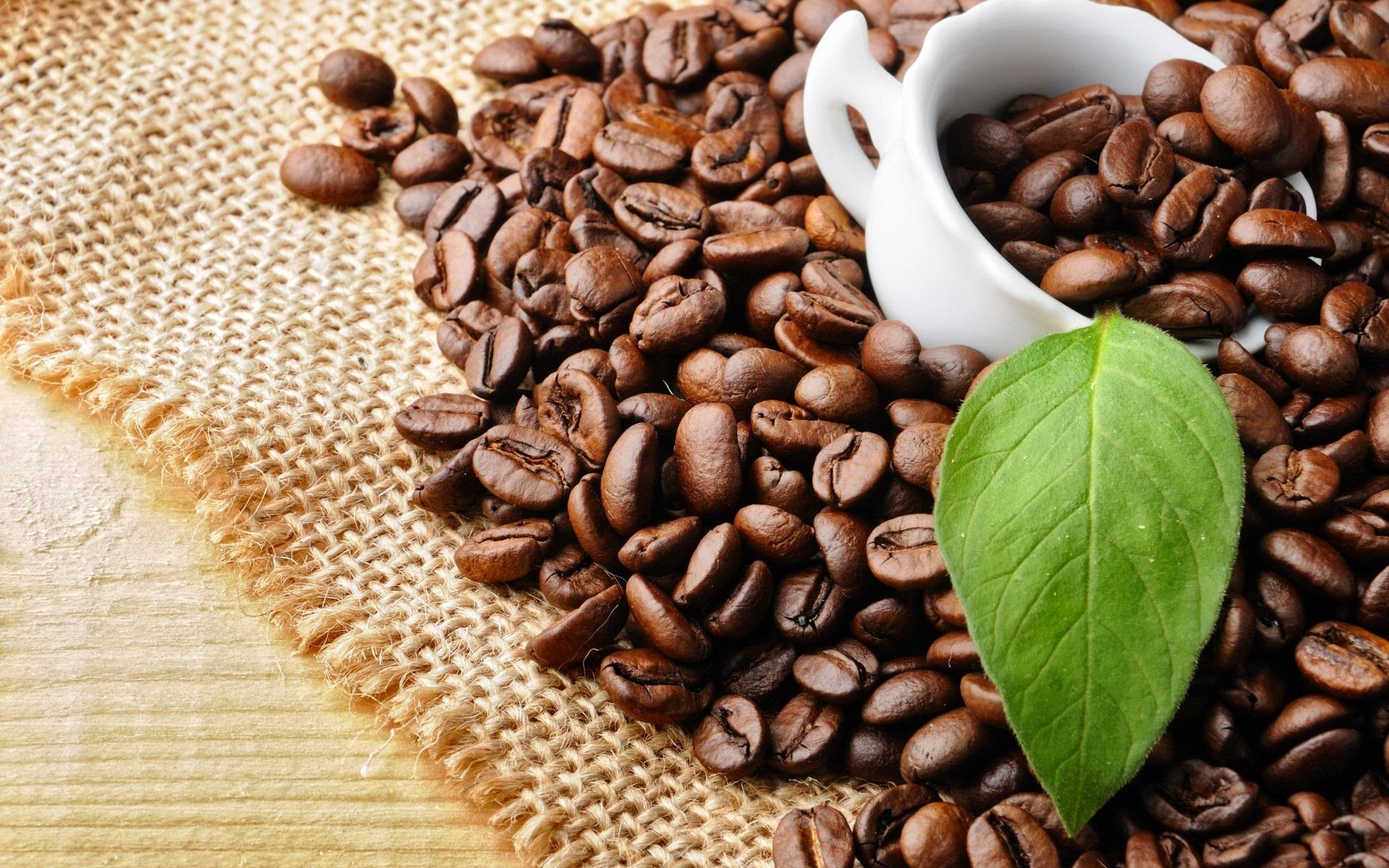 Sell MOKA GROUND COFFEE - VIETDELI