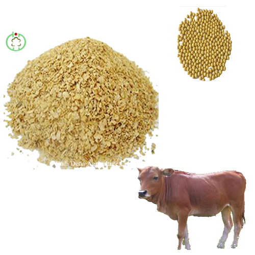 soyabean meal animal feed superior quality and low price