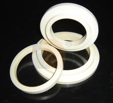 Alumina Ceramic Seal Face or Ring