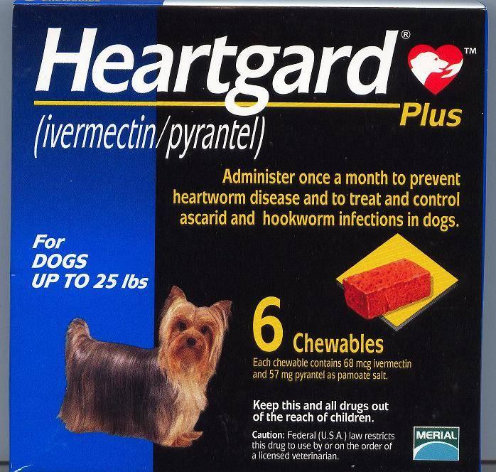 HEARTGARD PLUS CHEW