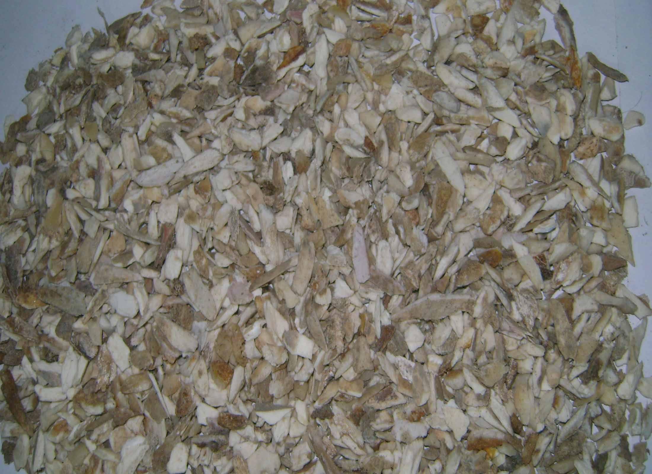 Crushed Bone Sales from Bangladesh