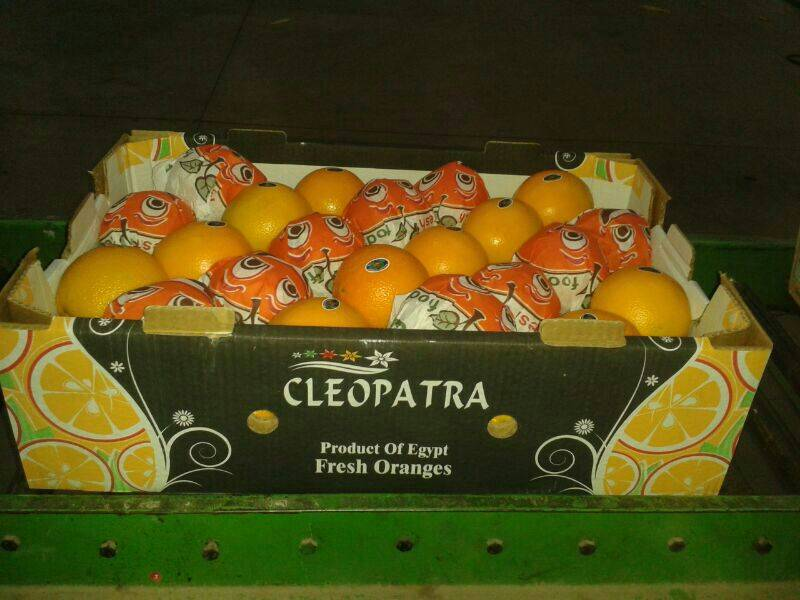container of oranges