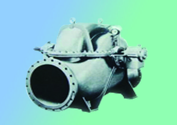 Double Suction pump (API 610 BB1)