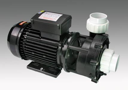 Wp Series Two Speed Spa Pump
