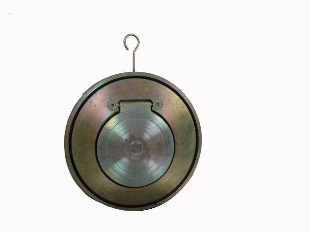 single door check valve