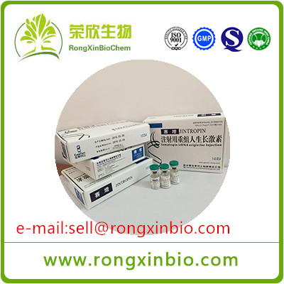 Good Quality Injectable Jintropin HGH Human Growth Hormone 100iu/kit For Anti-Aging Muscle Growth