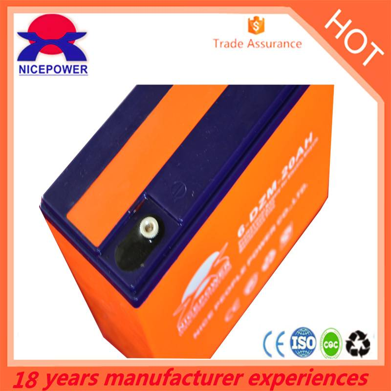 deep cycle battery/electric motorcycles battery,12v