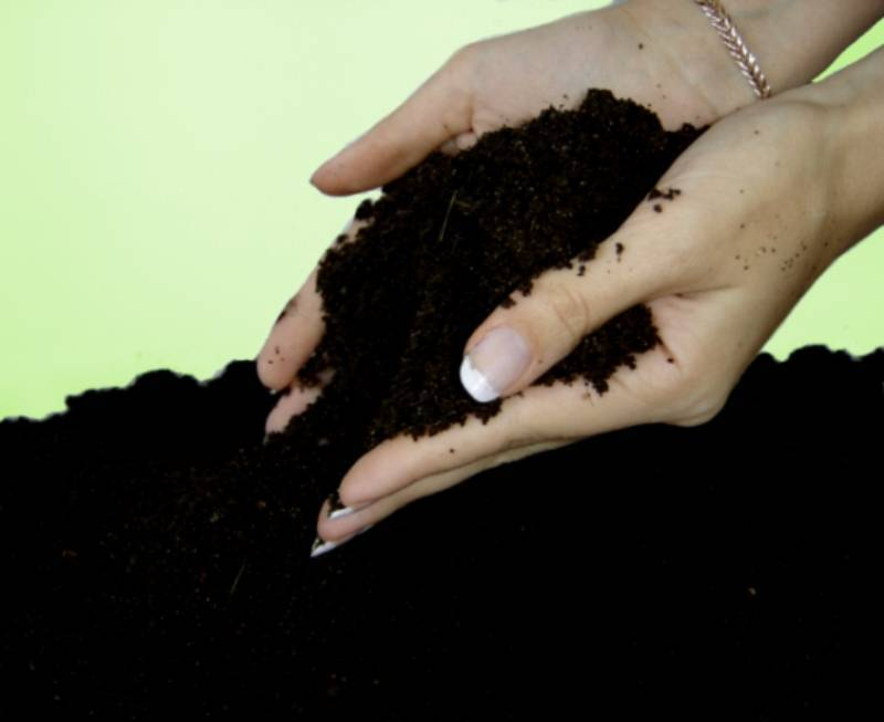 Vermicompost - ecologically pure organic fertilizer