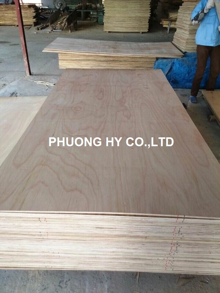 Sell Eucalyptus plywood 4x8 from Vietnam