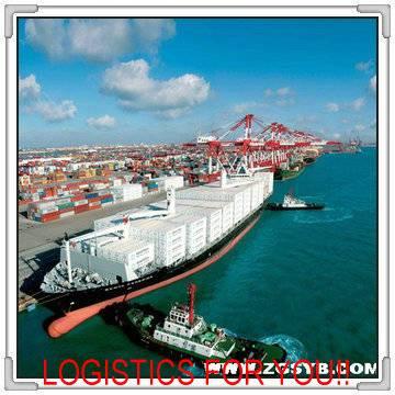 From Qingdao to Algeciras sea freight