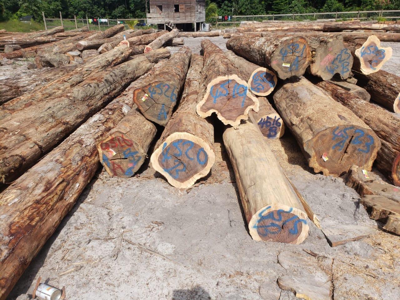 Wamara Logs
