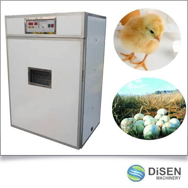 Chicken Egg Incubator Price