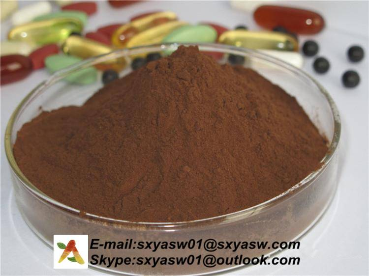 90% Indirubin Indigofera tinctoria L extract CAS No 479-41-4