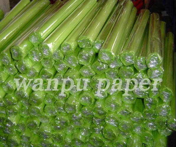Colour Tissue Paper Roll