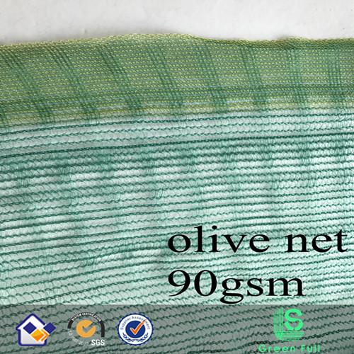 olive harvest net