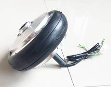 6 inch single side shaft brushless gear motor for self balancing scooter