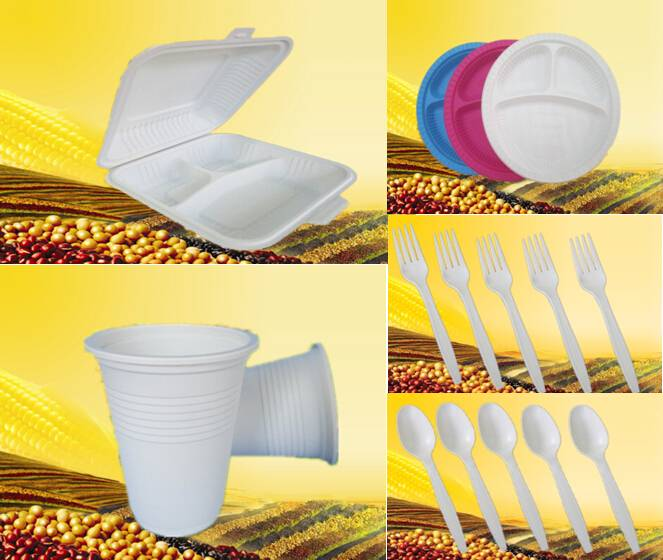 Plant Starch Disposable Lunch Box/plate/cup/fork/spoon