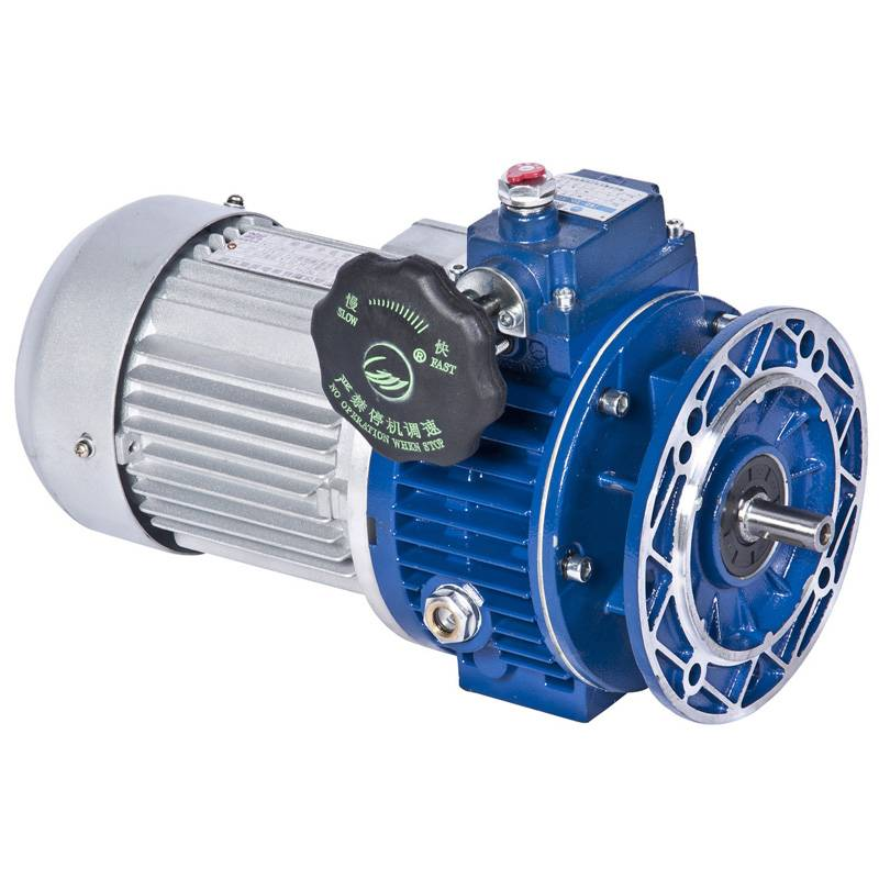 Speed variator with motor
