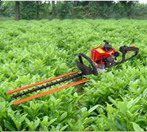 Supply Brush cutter,Hedge trimmer,Chain saw