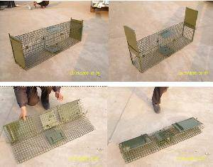 Collapsible animal catching cage