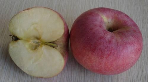 Delicious Qinguan Apple