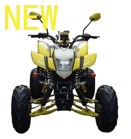 sell 200cc ATV/quad, with EEC, water cooling , NEW
