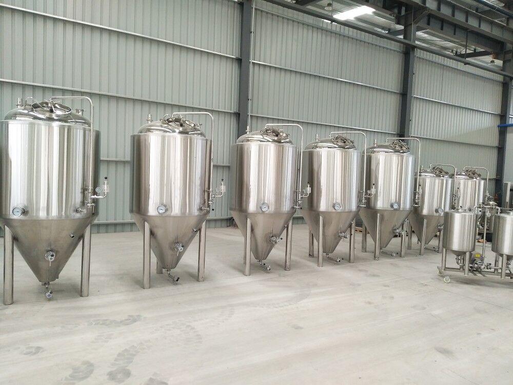 200L 500L 1000L 200L Best Fermenter For Craft Beer Fermenting