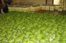 carvenish banana ,rubber latex,100% raw cotton,chickpeas,