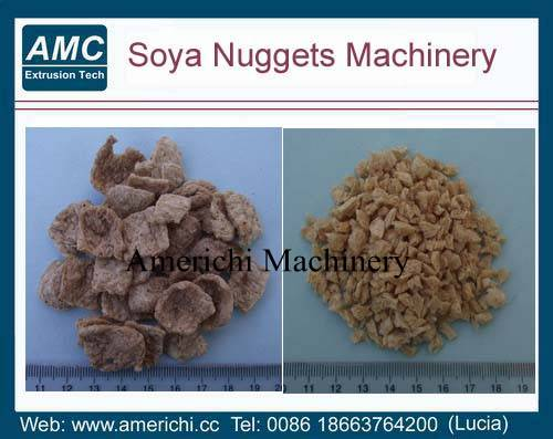 Soya protein food machines