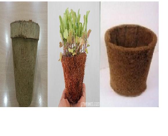 Biodegradable Coir Pots