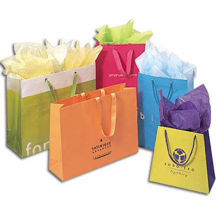Paper Carry Bags / Paper Shopping Bags