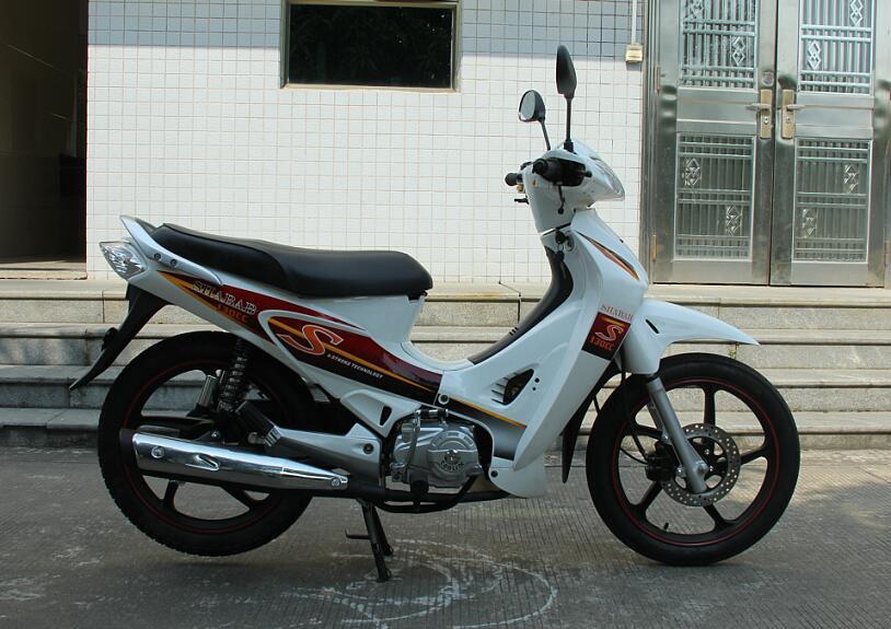 100cc/110cc Cub EEC Moto Bike / Motorcycle (SL110-B)
