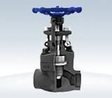 Forged steel bellow sealed valves