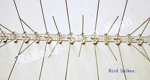 Bird spikes- a new environment-friendly products, keeping the bird away from your roof and windows.