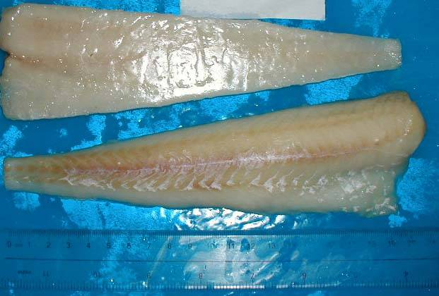 Frozen Alaska Pollock Fillets,Loins,Blocks Interleaved