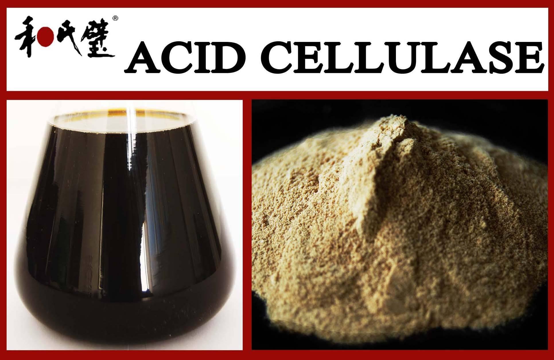 acid cellulase