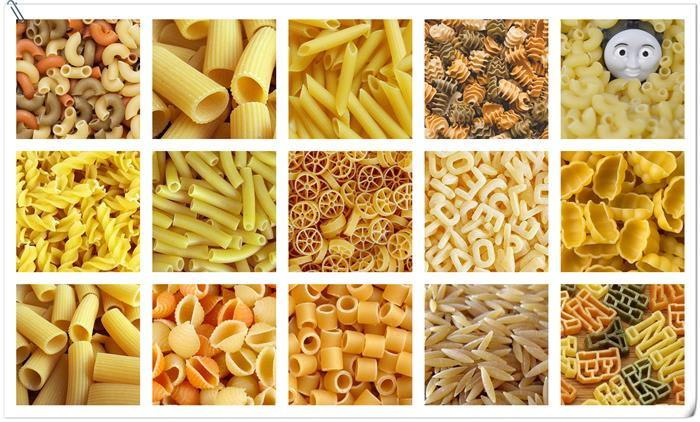Pasta Extruder/ Pasta Machine Factory