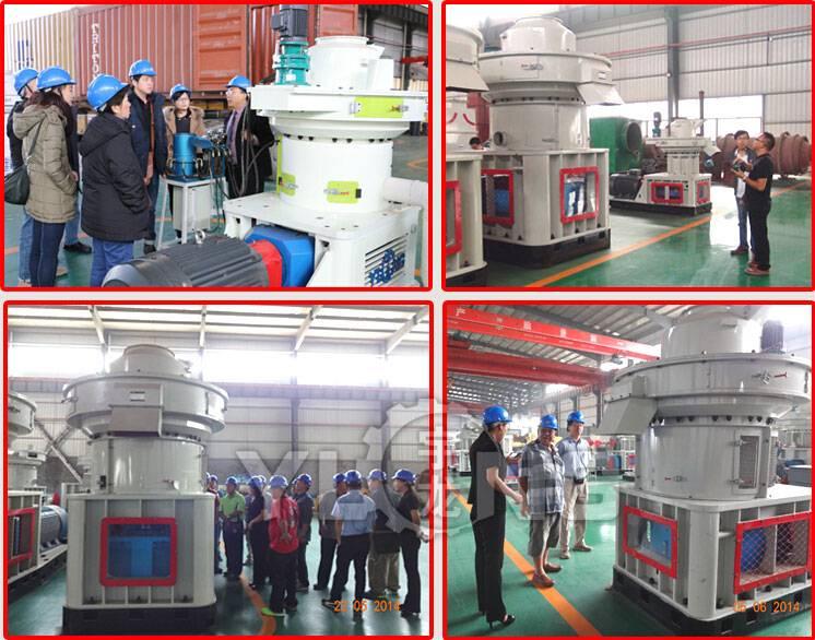 Palm fiber pellet mill,EFB pellet mill, efb pellet mill