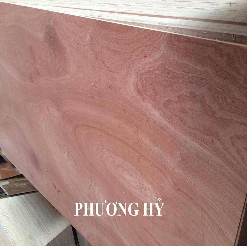 Sell Commercial plywood 4x8 grade AB glue MR from Vietnam