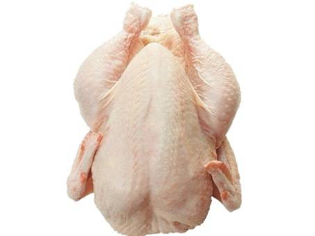 Whole frozen chicken HALAL HACCP
