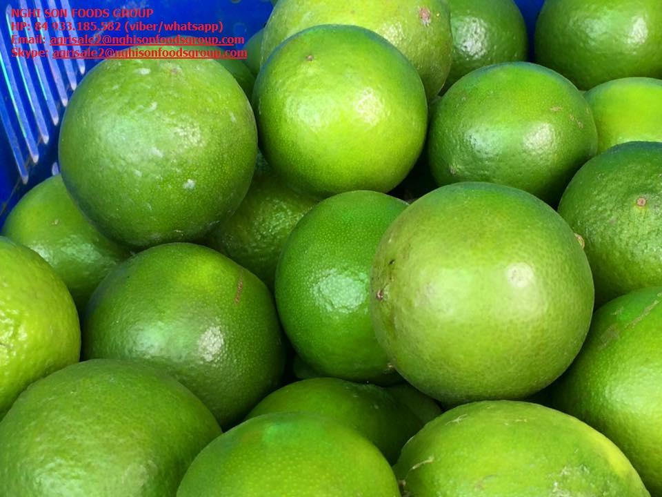 Selling Fresh Seedless Lime