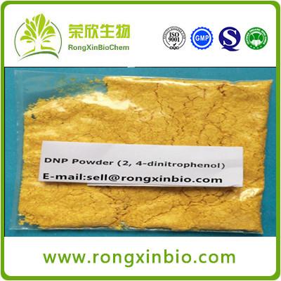 99% DNP CAS:51-28-5 Steroids Powder 2,4-Dinitrophenol (Dinitrophenol Powder )For Weight Los