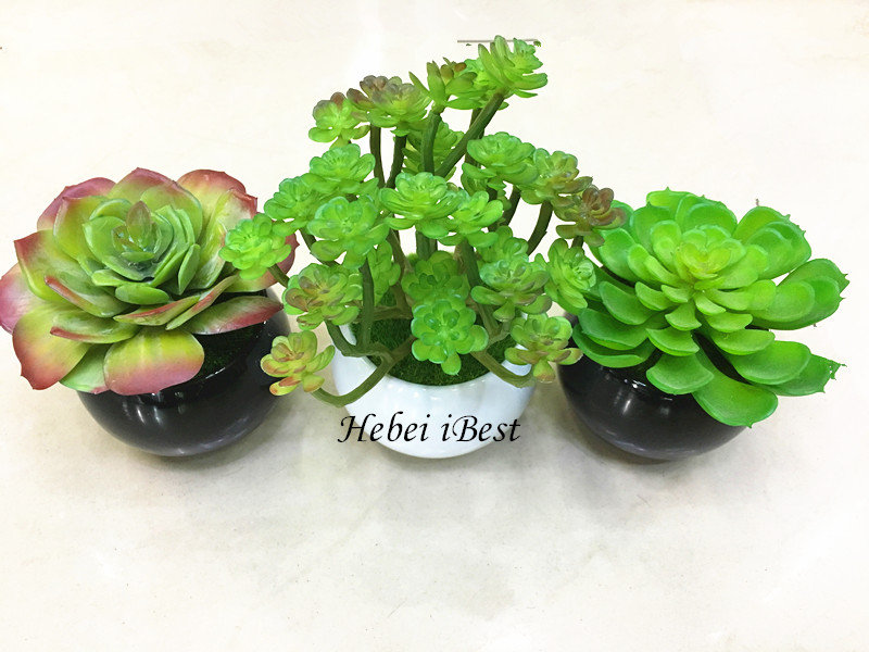 Offer Mini Artifical Succulents Plants in Round Pot for decoration