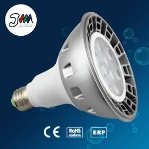 PAR38 LED PAR Light