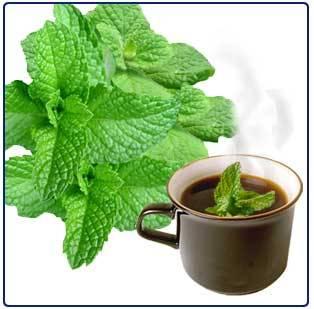 Buy Neels Mint Tea
