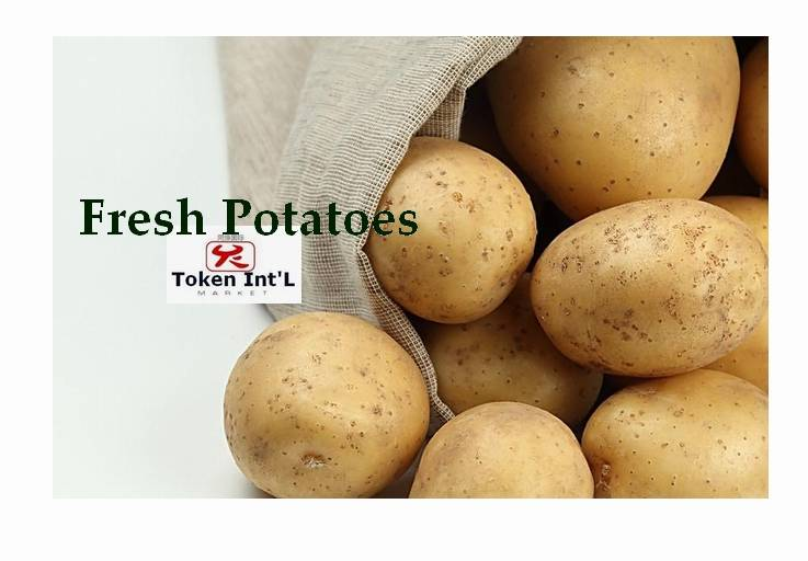 new crop Fresh Potato for sell