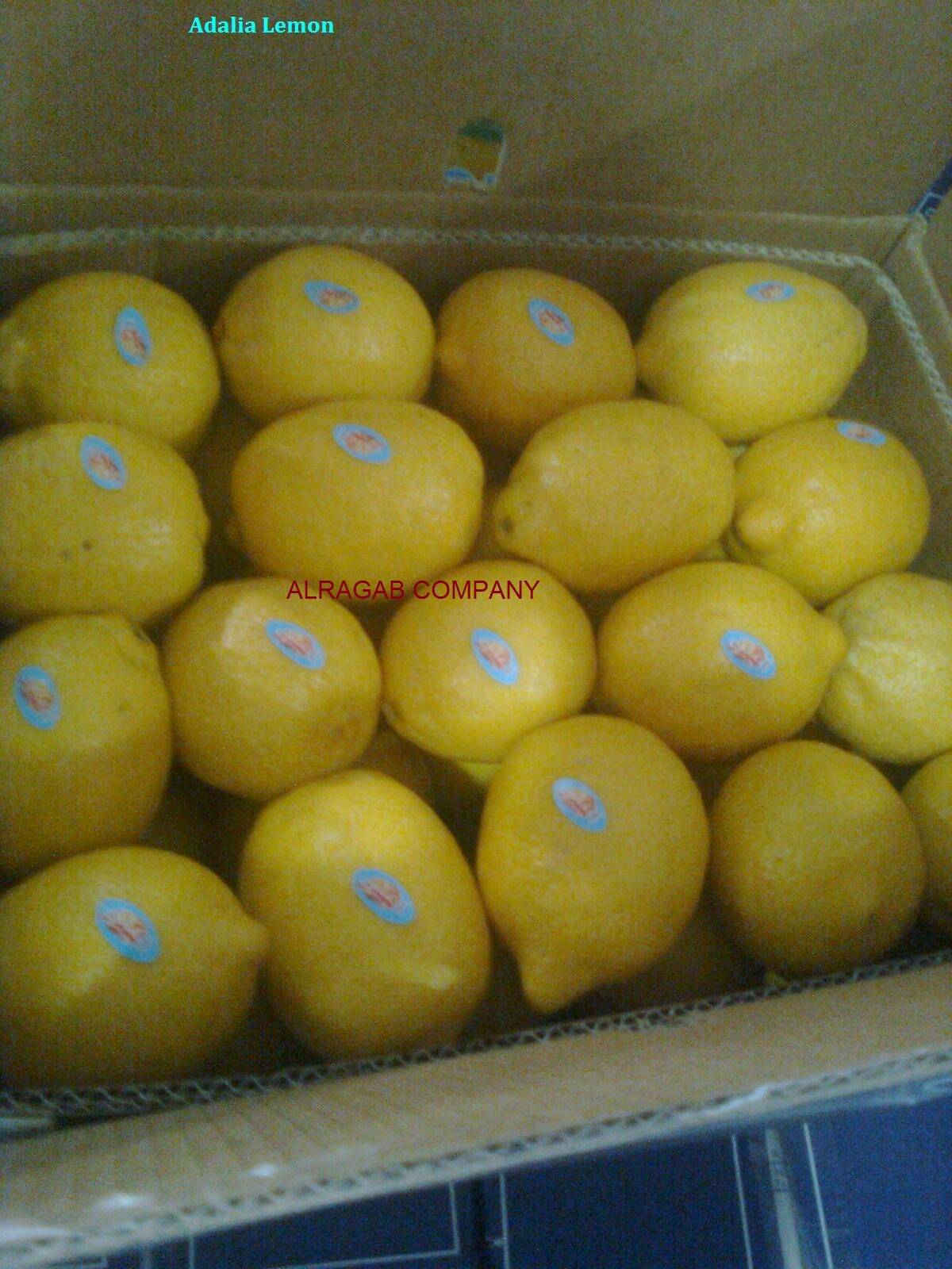 we offer fresh lemons