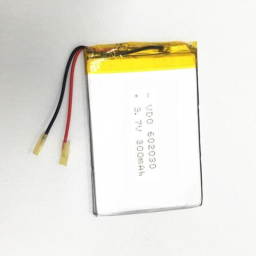 Lipolymer Battery