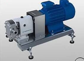 stainless steel mobile rotary lobe pump with gear box